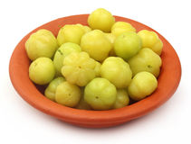 Fresh Orboroi fruits on a clay pottery Stock Photos