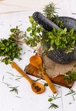 Fresh oregano and rosemary in mortar over white wooden background Stock Photography
