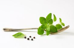 Fresh oregano sprigs on fork Royalty Free Stock Photo