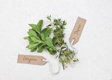 Fresh oregano and thyme herbs. With tag on a marble background stock image