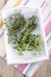 Fresh oregano, thyme and rosemary Stock Images