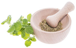 Fresh Oregano (on white) Stock Image