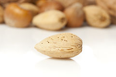 Fresh Organic Almond Stock Photo