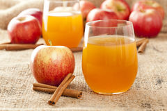 Fresh Organic Apple Cider Stock Photography