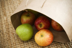 Fresh organic apples. Fresh market organic apples spilling out of a brown paper shopping bag Royalty Free Stock Photography