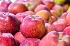 Fresh organic apples on street market stall Stock Images