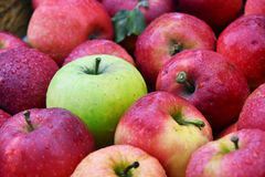 Fresh organic apples on street market stall Royalty Free Stock Photo