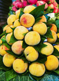 Fresh organic apricot with green leaves for sale Stock Image
