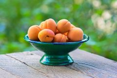 Organic apricots in green vase Royalty Free Stock Image