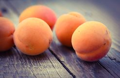 Fresh organic apricots Stock Photos