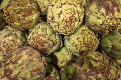 Fresh Organic Artichokes Royalty Free Stock Images