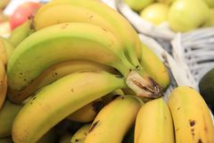 Fresh organic Banana Bunch on Farmers Market Stock Image