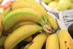 Fresh organic Banana Bunch on Farmers Market stock image