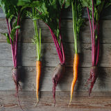 Fresh organic beet and carrot on rustic wooden background, healthy lifestyle, autumn harvest, raw vegetables, top view. Fresh organic beet and carrot on rustic Royalty Free Stock Photo