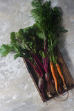 Fresh organic beet and carrot in wooden box, healthy lifestyle, autumn harvest, raw vegetables, top view. Fresh organic beet and carrot, healthy lifestyle Stock Photography