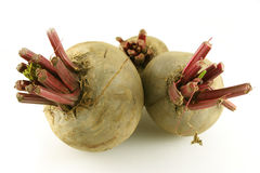 Fresh Organic Beetroot Royalty Free Stock Photo