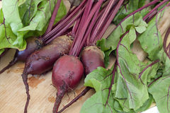 Fresh organic beetroot Stock Image