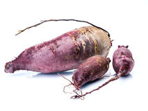 Fresh organic beetroots Stock Photo
