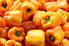 Fresh organic bell pepper background Stock Image