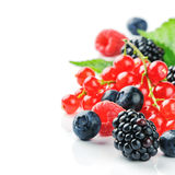 Fresh organic berries Royalty Free Stock Image