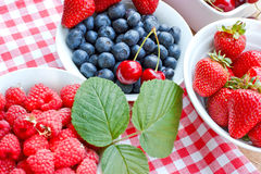 Fresh organic berry fruits Stock Images
