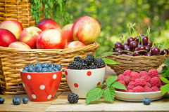 Fresh organic berry fruits Royalty Free Stock Photography