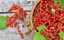 Fresh Organic Berry Fruits Woodent Royalty Free Stock Image