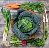 Fresh organic bio vegetables on wooden background. Fresh and organic bio vegetables on a wooden background Royalty Free Stock Images