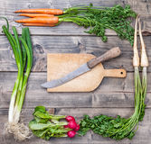 Fresh organic bio vegetables on wooden background. Fresh and organic bio vegetables on a wooden background Royalty Free Stock Photos