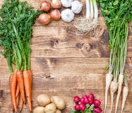 Fresh organic bio vegetables on wooden background. Fresh and organic bio vegetables on a wooden background Royalty Free Stock Image