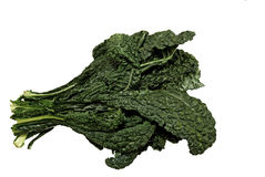 Fresh organic black Kale Stock Images