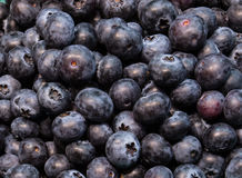 Fresh organic blueberries in paper baskets. On a country farm market Stock Images