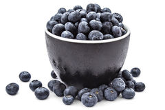 Fresh organic blueberries. Fresh ripe organic blueberries in a frozen black bowl on a white background Stock Image