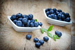 Fresh organic blueberry Stock Images