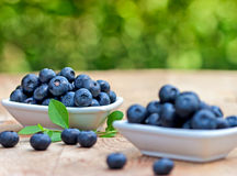 Fresh organic blueberry in bowls Royalty Free Stock Photography