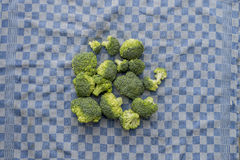 Fresh organic broccoli on a blue checkered kitchen towel Royalty Free Stock Photography