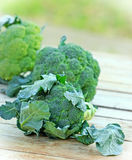 Fresh organic broccoli (brocolli) Royalty Free Stock Photography