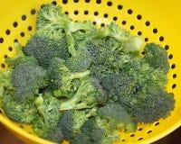 Fresh Organic broccoli florets in colander Royalty Free Stock Image