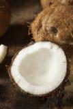 Fresh Organic Brown Coconut Stock Photo