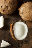 Fresh Organic Brown Coconut Stock Image