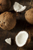 Fresh Organic Brown Coconut Royalty Free Stock Images