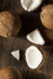 Fresh Organic Brown Coconut Royalty Free Stock Image