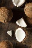 Fresh Organic Brown Coconut Royalty Free Stock Image