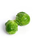 Fresh organic Brussels sprouts Royalty Free Stock Photography