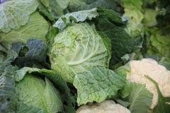 Fresh organic Cabbage on Farmers Market royalty free stock photos