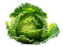 Fresh organic cabbage head isolated on white Stock Images