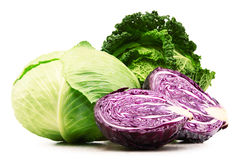 Fresh organic cabbage heads isolated on white Royalty Free Stock Photography