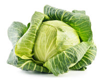 Fresh organic cabbage on white. Background Stock Photography