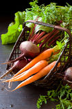 Fresh organic carrot and beet Royalty Free Stock Photography