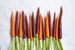 Fresh Organic Carrots on  Marble Surface. Overhead view of fresh organic yellow and purple carrots on a marble surface stock image